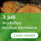 3 juli  - Workshophoutige biomassa